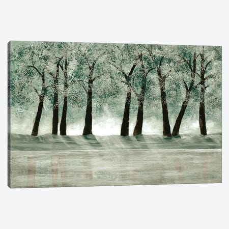 Green Forest I Canvas Print #DRI29} by Doris Charest Canvas Wall Art