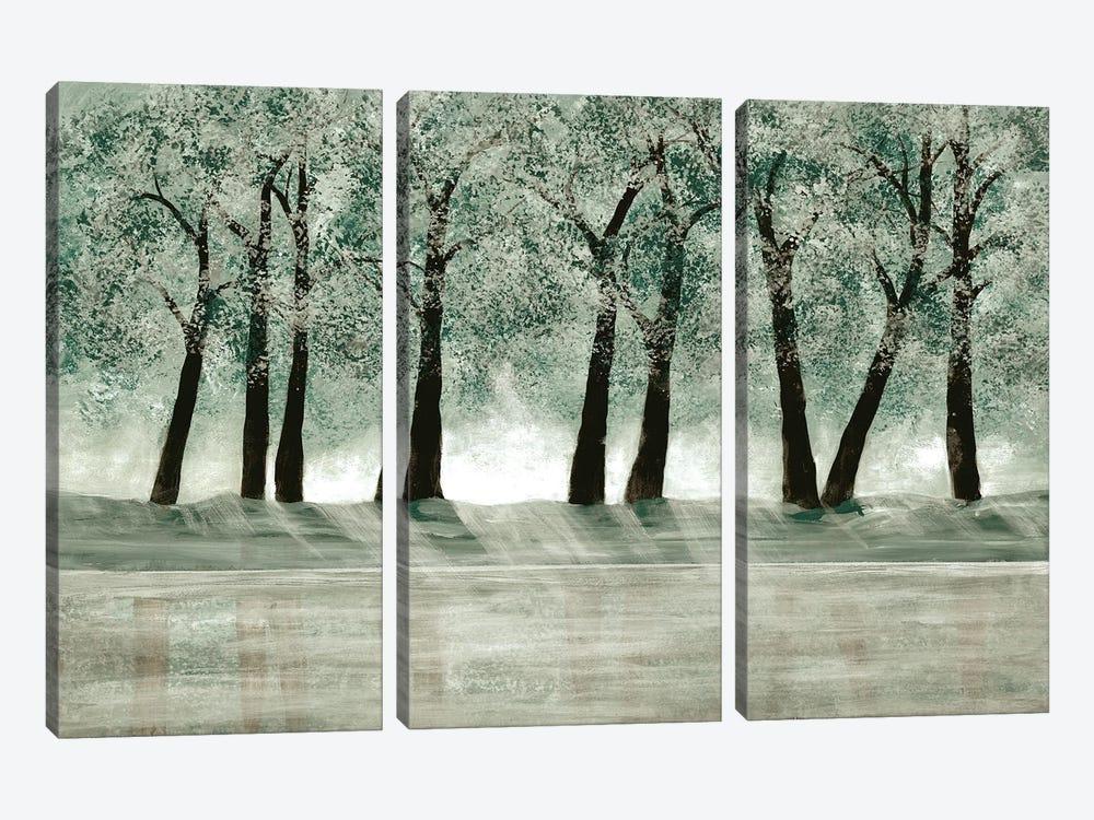 Green Forest I by Doris Charest 3-piece Canvas Wall Art