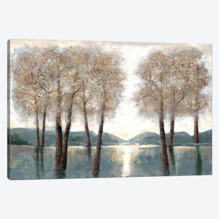 Approaching Woods Canvas Print #DRI2} by Doris Charest Art Print
