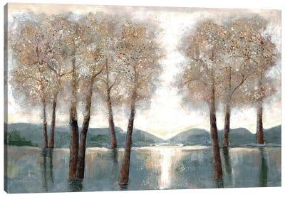 Approaching Woods Canvas Art Print