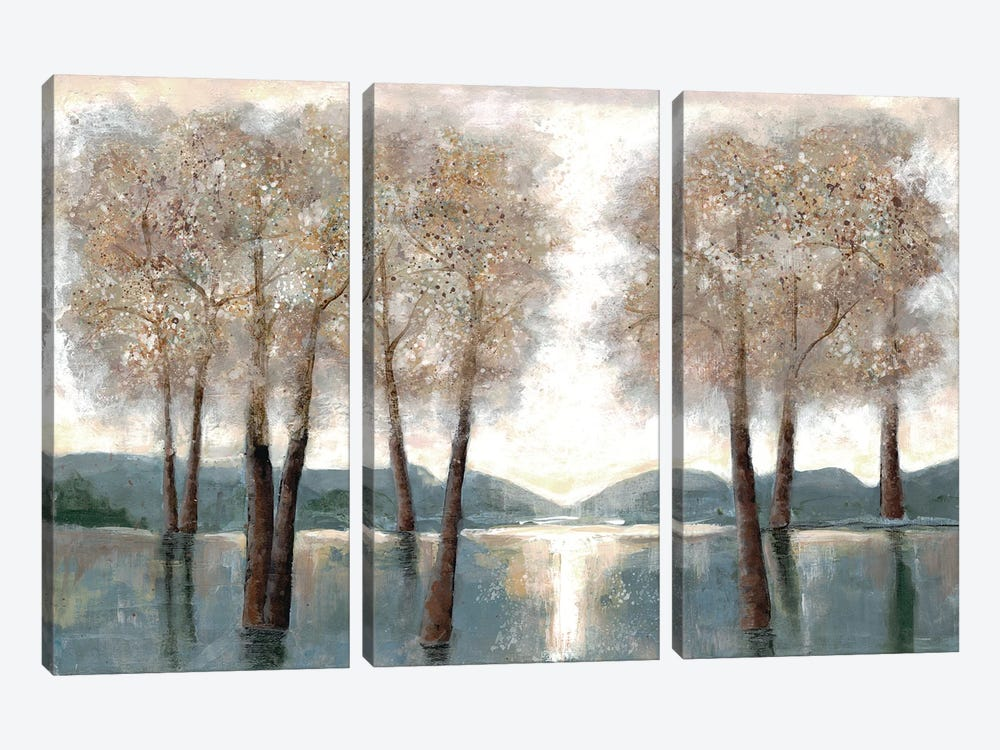Approaching Woods by Doris Charest 3-piece Canvas Art