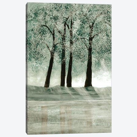 Green Forest II Canvas Print #DRI30} by Doris Charest Canvas Art Print