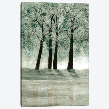 Green Forest II Canvas Print #DRI30} by Doris Charest Canvas Art Print