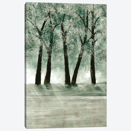 Green Forest III Canvas Print #DRI31} by Doris Charest Canvas Art Print
