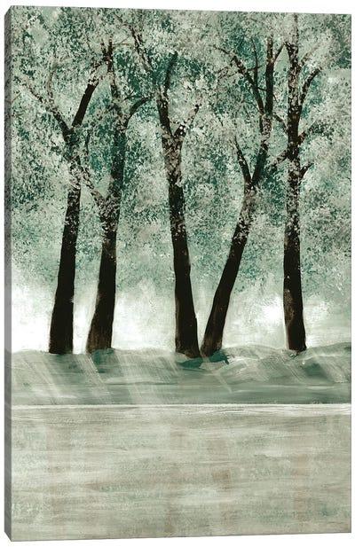 Green Forest III Canvas Art Print