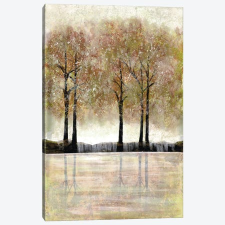 Serene Forest Canvas Print #DRI37} by Doris Charest Canvas Artwork
