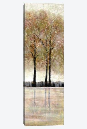 Serene Forest  III Canvas Print #DRI38} by Doris Charest Canvas Art Print