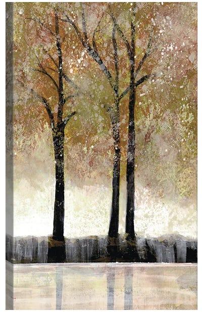 Serene Forest  III Canvas Art Print