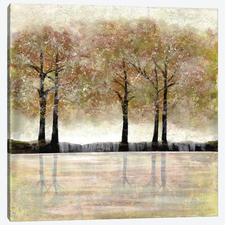 Serene Forest I Canvas Print #DRI39} by Doris Charest Art Print