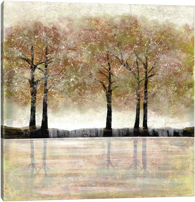 Serene Forest I Canvas Art Print