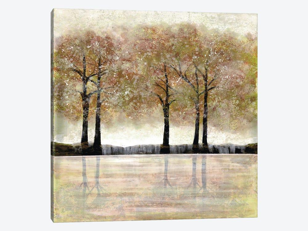 Serene Forest I by Doris Charest 1-piece Canvas Print