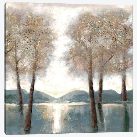 Approaching Woods II Canvas Print #DRI3} by Doris Charest Canvas Art Print