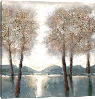 Approaching Woods II Canvas Art Print