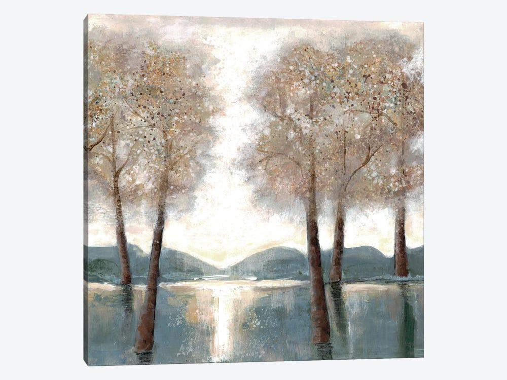 Approaching Woods II by Doris Charest 1-piece Canvas Art Print