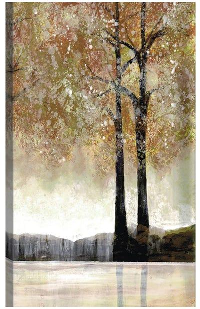 Serene Forest II Canvas Art Print