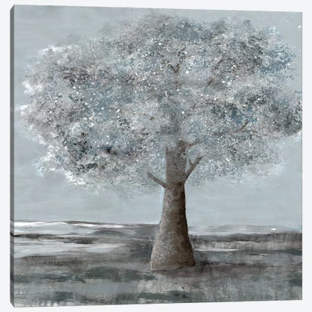 Solitary Beauty II Canvas Print #DRI43} by Doris Charest Canvas Wall Art