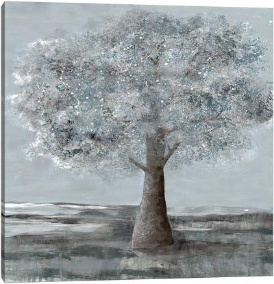 Solitary Beauty II Canvas Art Print