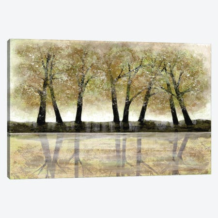 Spring Forest Canvas Print #DRI44} by Doris Charest Art Print