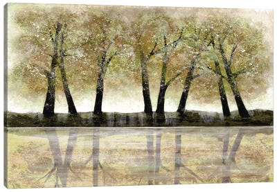Spring Forest Canvas Art Print