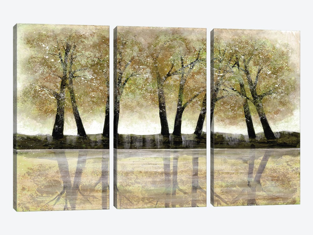 Spring Forest by Doris Charest 3-piece Canvas Art Print