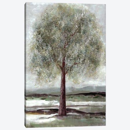 Twilight Of Spring I Canvas Print #DRI48} by Doris Charest Canvas Artwork