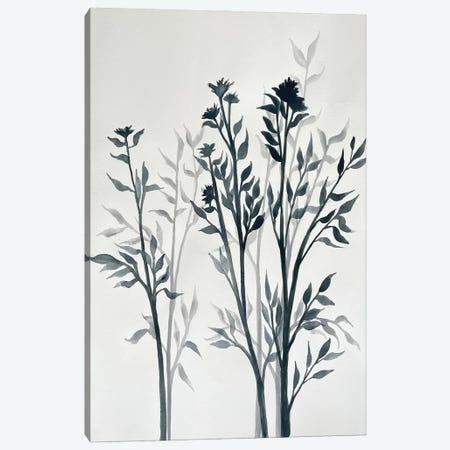Botanical Inspiration I Canvas Print #DRI56} by Doris Charest Canvas Wall Art