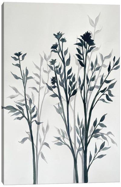 Botanical Inspiration I Canvas Art Print