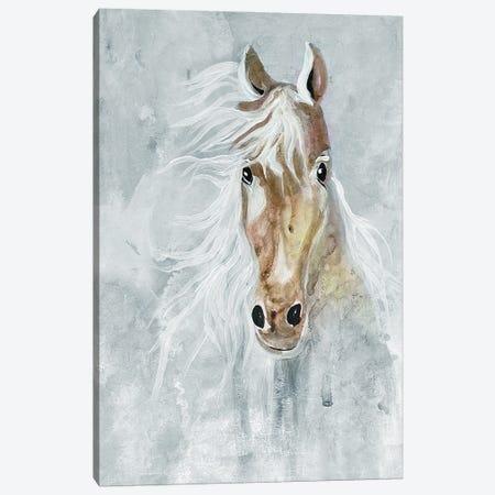 Magical Steed II Canvas Print #DRI67} by Doris Charest Canvas Print
