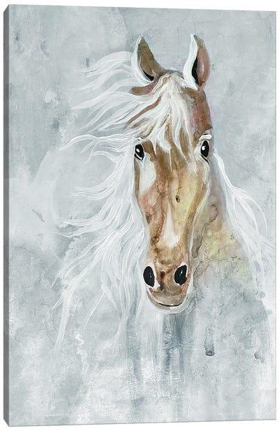 Magical Steed II Canvas Art Print