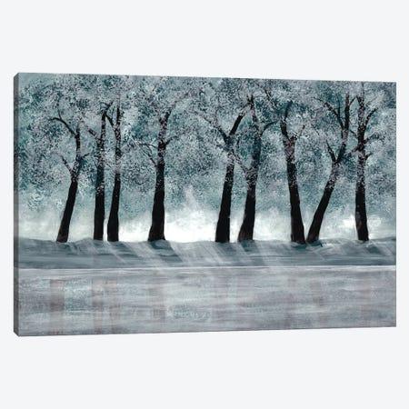 Blue Forest Canvas Print #DRI6} by Doris Charest Canvas Art