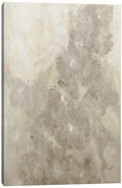 Vibrant Release II Canvas Art Print