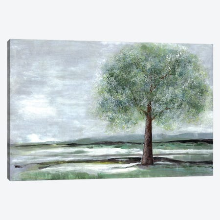 Breath Of Spring I Canvas Print #DRI8} by Doris Charest Art Print