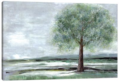 Breath Of Spring I Canvas Art Print