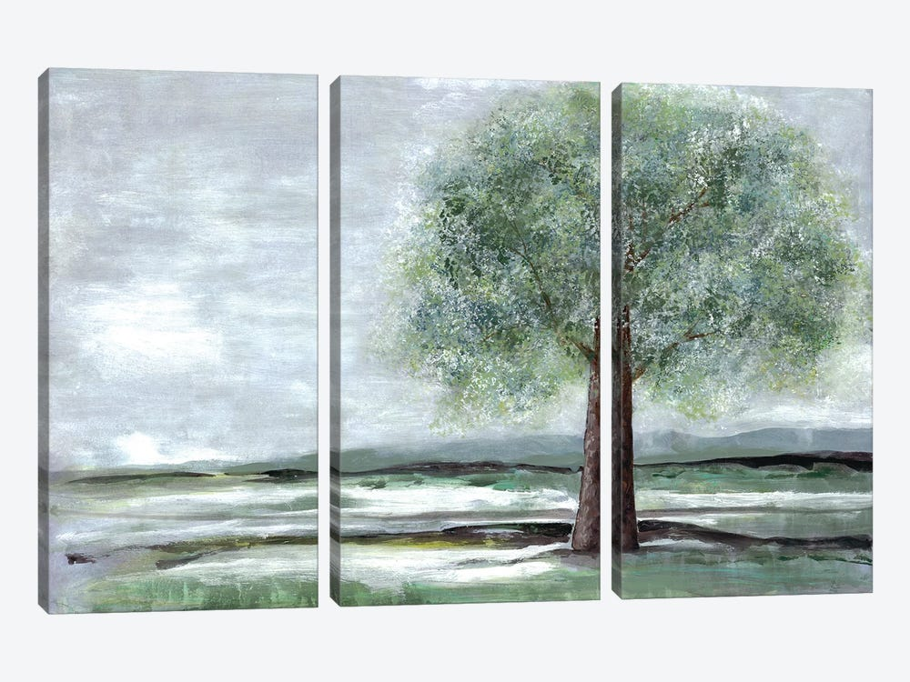Breath Of Spring I by Doris Charest 3-piece Canvas Wall Art