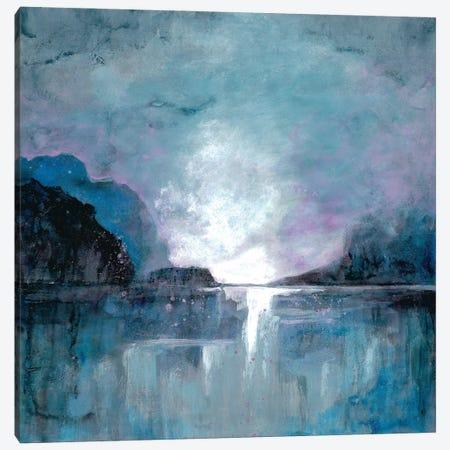 Cavernous Wonder I Canvas Print #DRI9} by Doris Charest Canvas Art Print