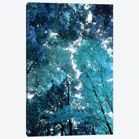 Blue Forest I Canvas Print #DRK1} by Derek Scott Canvas Art Print