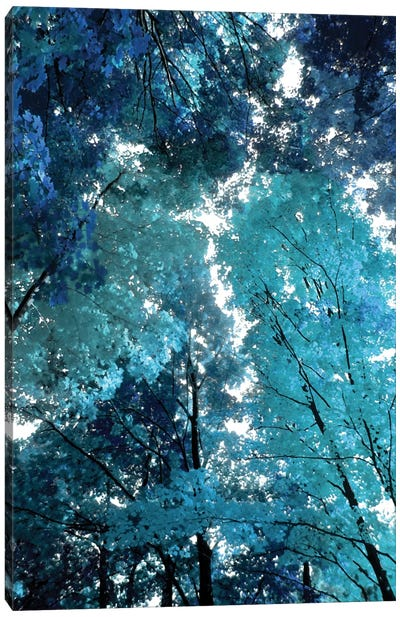 Blue Forest I Canvas Art Print