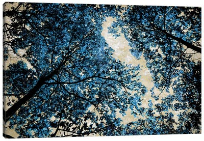 Blue Forest II Canvas Art Print