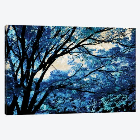 Blue Forest III Canvas Print #DRK3} by Derek Scott Canvas Print