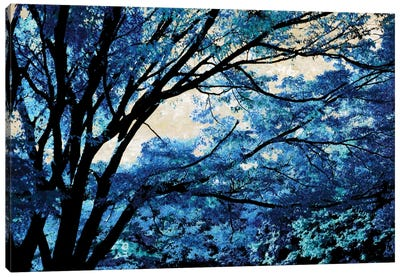 Blue Forest III Canvas Art Print