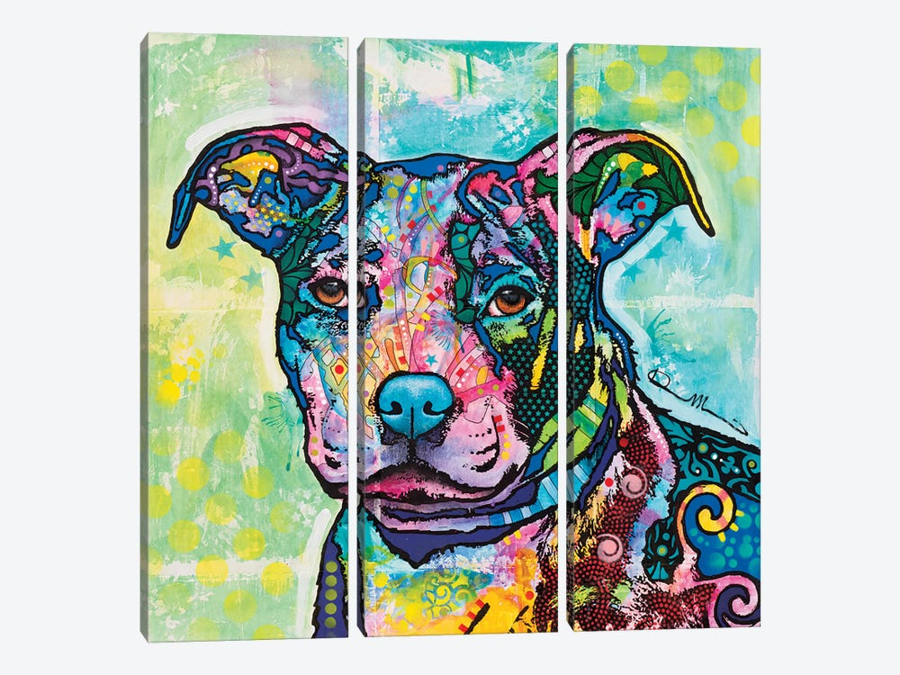Entrancing by Dean Russo 3-piece Canvas Art