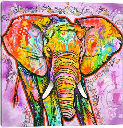 Elephant Canvas Print #DRO125