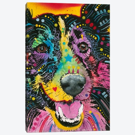 Smiling Collie Canvas Print #DRO127} by Dean Russo Canvas Art Print