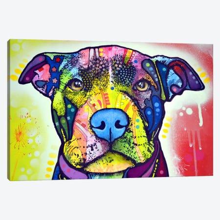 Love A Bull This Years Love Canvas Print #DRO12} by Dean Russo Canvas Print