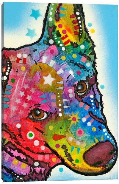Aussie Sheep Dog Canvas Print #DRO130
