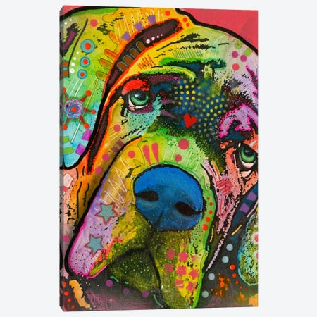 Mastiff Canvas Print #DRO133} by Dean Russo Canvas Art Print