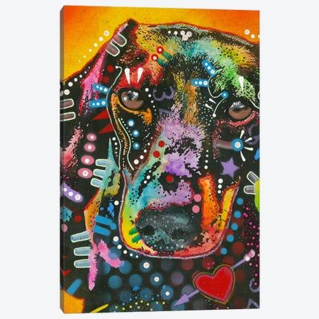 Brilliant Dachshund Canvas Print #DRO136} by Dean Russo Canvas Artwork