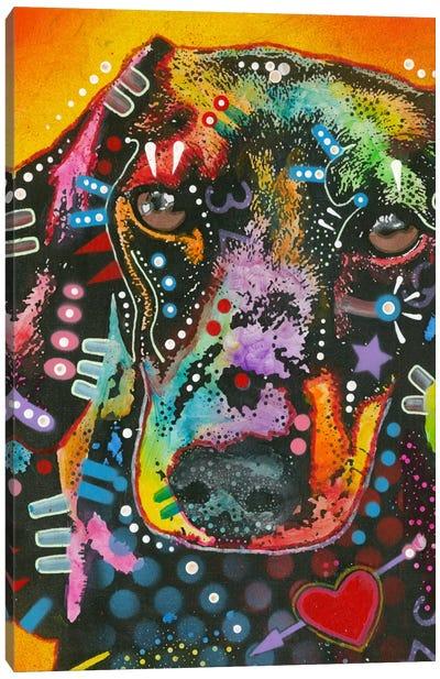 Brilliant Dachshund Canvas Art Print