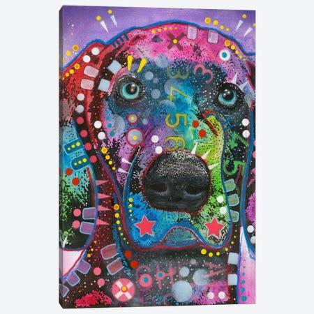 Purple Excitement Canvas Print #DRO138} by Dean Russo Art Print
