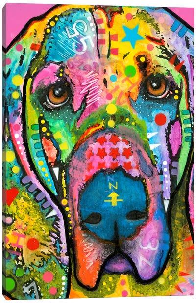 Bloodhound Canvas Print #DRO142